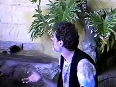 Terence McKenna Video Archive - #20: Terence at Rustlers, South Africa (1996)