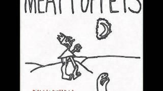 Watch Meat Puppets Buckethead video