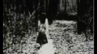 Watch Abandon Will Gladly Perish video