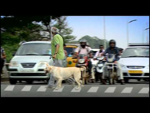 Road Saftey Awareness By Actor Surya video