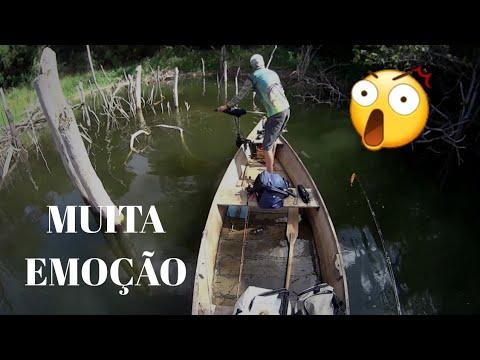 MUITA EMOÇÃO NA PESCARIA DE TUCUNARÉ!