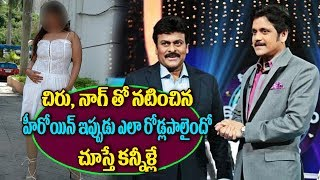 No Offers For Top Actress Who Acted With Chiranjeevi And Nagarjuna | Celebrity Latest News | TTM