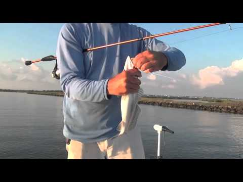 Grand Isle Speckled Trout