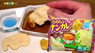 Kracie Popin Cookin Naan Curry kit クラシエ ポッピンクッキン たのしいナンカレー