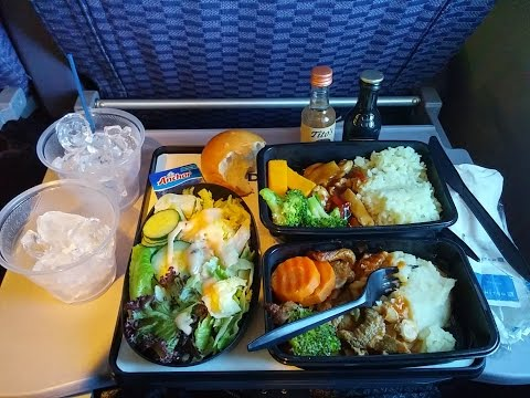 4K UHD United Airlines 777 Food Service PVG-EWR Free Dinner International Coach Part 1