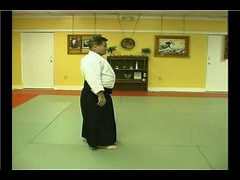 Aikido Techniques : Arm Lock Technique Image 1