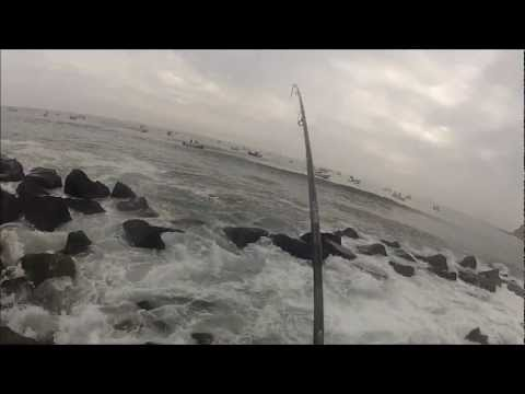MONTAUK NY - EPIC Striped Bass Blitz October GoPro
