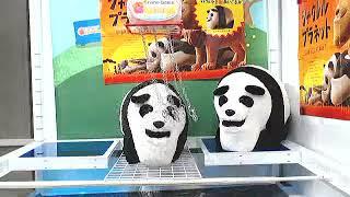 Toreba 12 - Got [Shakurel Planet - Panda BIG Plushy (R)]!!