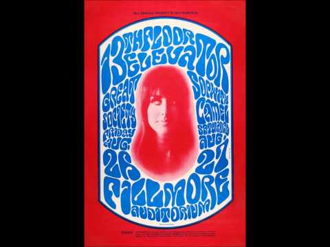 13th Floor Elevators - Reverberation