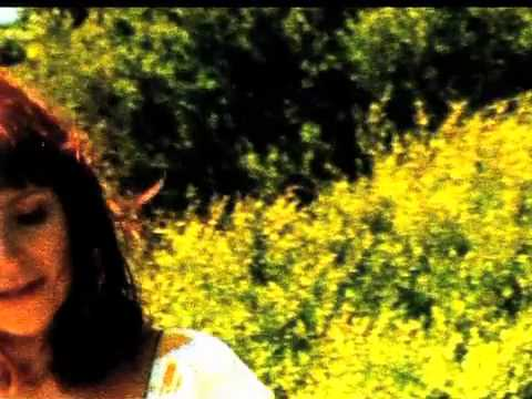 Аквариум, Борис Гребенщиков - Wild Horses