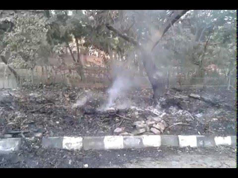 Biomass Burning outside Vasant Vatika Park, Sector C, New Delhi