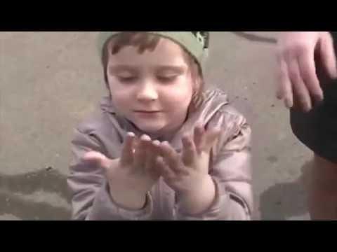 А в Находке «Черный лед» - жители, задыхающиеся от угольной пыли, попросили президента о помощи