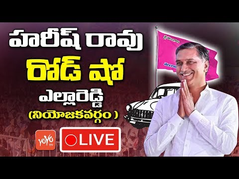 Harish Rao Road Show LIVE | TRS Election Campaign in Yellareddy | Telangana | YOYO TV Channel