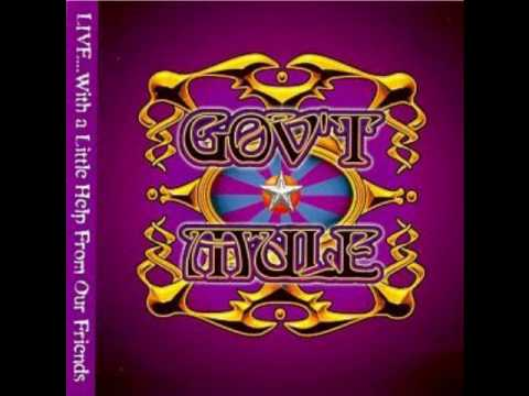 Gov't Mule - 30 Days In The Hole