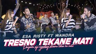 Download lagu Esa Risty ft Wandra - Tresno Tekane Mati ( ) Pengenku Siji Nyanding Sliramu
