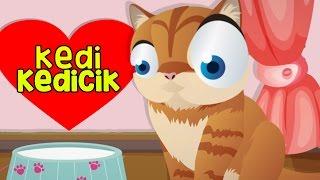Kedi Kedicik Ben Seni Çok Severim - Yeni Çocuk Şarkısı