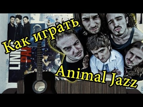 aккорды animal джaz: