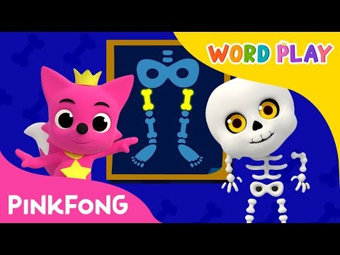 Bones | Word Play | Pinkfong Songs for Children