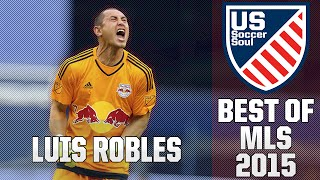 Luis Robles ● Skills, Saves, Highlights MLS 2014/15 ● US Soccer Soul | HD