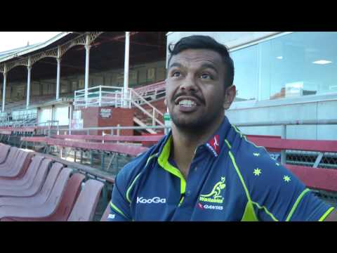Wallabies Stories - Living in Melbourne