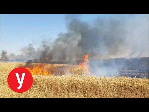 שריפה שנגרמה מבלון בתחום מועצה אזורית שדות נגב