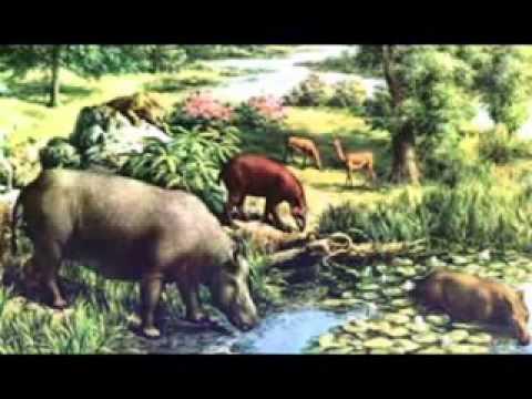 Eras Geologicas Cenozoica Era Cenoz Ica