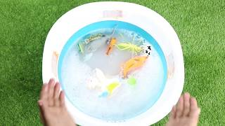 Learn Animals names with Ladybug and more Toys   Kids Educational Video