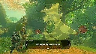 Zelda: BOTW (Collecting All 900 Koroks Seeds Before Talking To Hestu) Master Mode
