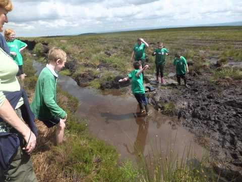 Monaghan County Council Environment Section ECO SUMMER CAMP 2012