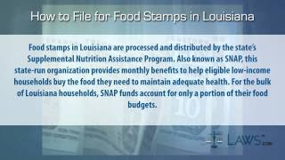 Louisiana food stamps application form 3gp mp4 hd video download how to file for food stamps louisiana ccuart Choice Image