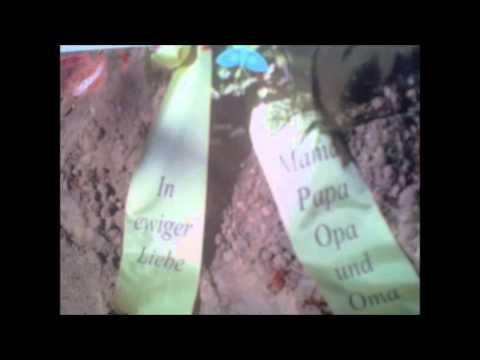 Die Toten Hosen - Du Fehlst