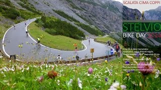 Stelvio bike day 2014 【HD】