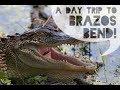 Day Trip to Brazos Bend