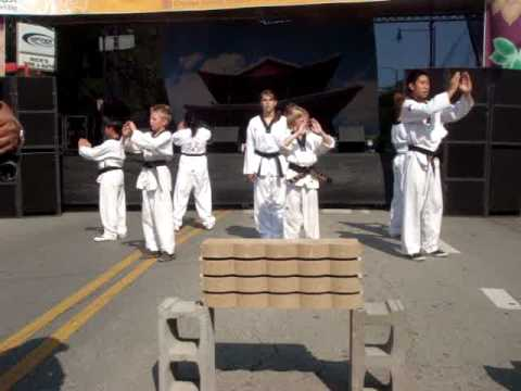 Yong Tae Kwon Do Demonstration at Korea Fest Chicago #1 Image 1
