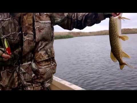 видео ловля на поверхностные приманки по траве видео
