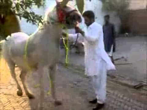 Rab De Rang video
