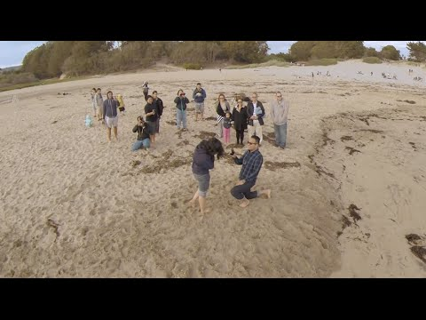 David's proposal to Frances - Shot with GoPros, DSLR and a Drone - at Natural Bridges State Park,