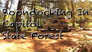 Boondocking in Capitol Forest