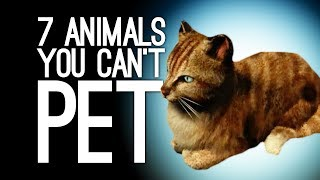7 Animals You Can't Pet Because I Guess The Game Hates You