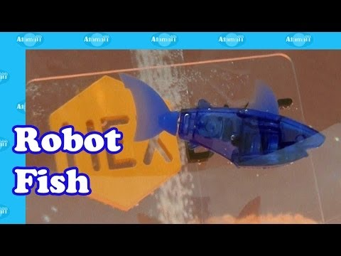 Hexbug aquabot new water based hex bugs coming 2013 as for Aquabot smart fish