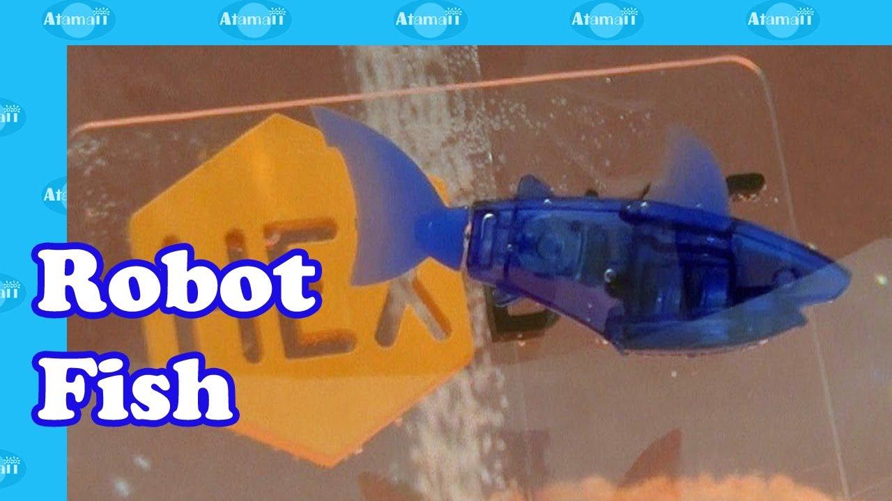 Aquabot robot fish by hexbug youtube for Robot fish toy