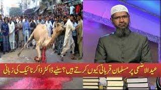 Eid Ul Adha celebration based on 10 lies for zakir naik and yusuf estes
