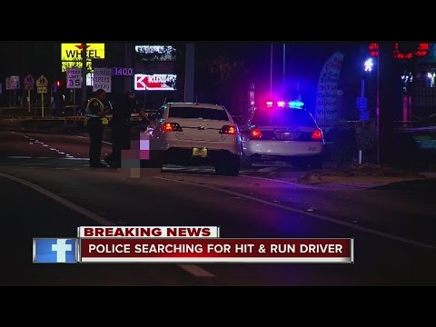 Pedestrian killed in hit-and-run crash in St. Pete