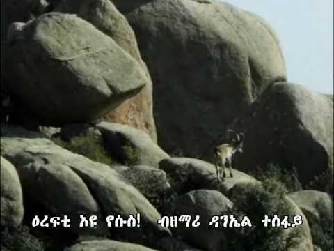 Eritrean Tigrigna gospel song.Erefti Eyu Yesus.wmv