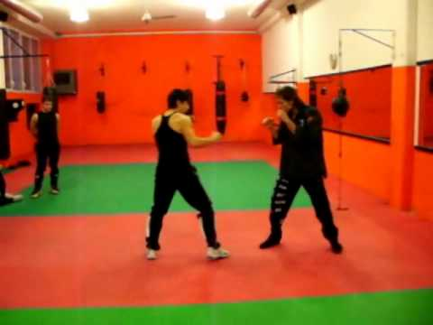JUN FAN JEET KUNE DO   Training Image 1