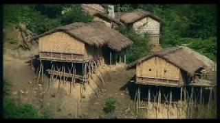 Beautiful Bangladesh documentary on Forest by farabi hafiz
