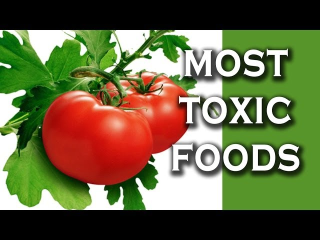 Top 10 Toxic Foods We Love To Eat