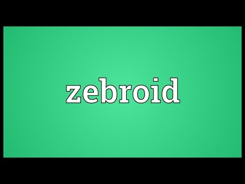 Zebroid Meaning