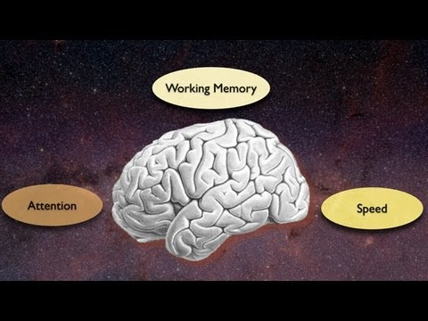 Exploring the Crossroads of Attention and Memory in the Aging Brain: Views from the Inside