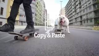 Copy & Paste - Comercial da Vivo com cachorro e dono skatistas